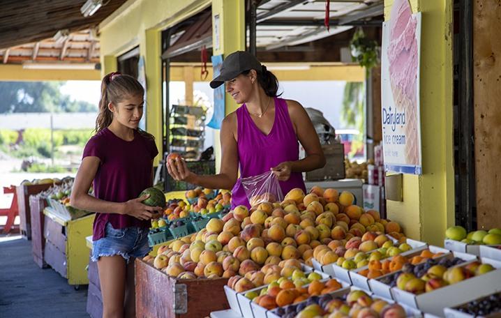 Fruit stand 445, Keremeos, summer, Similkameen, activities, Darren Robinson